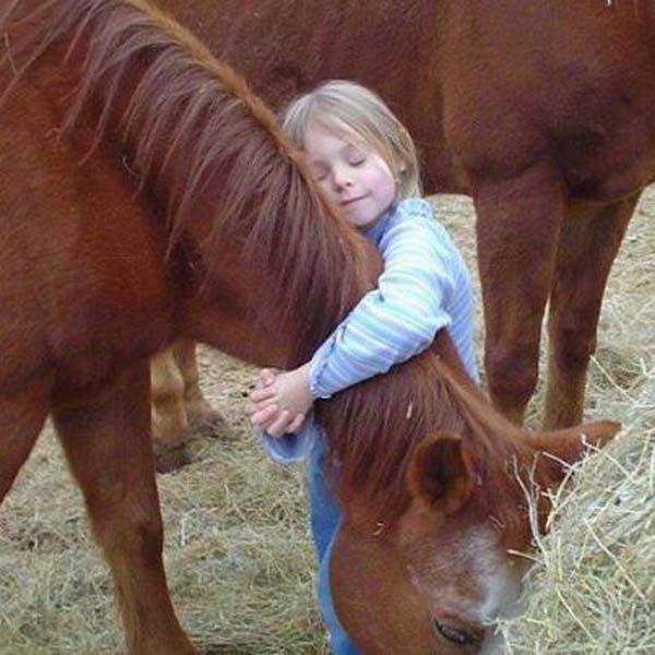 little girl with horse