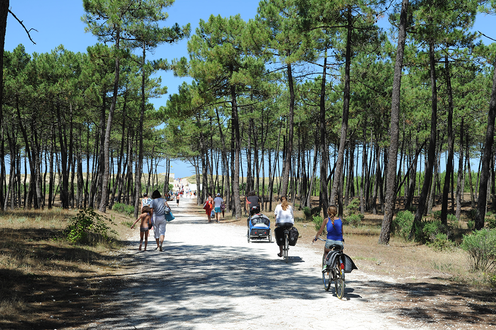 Charentes Maritimes