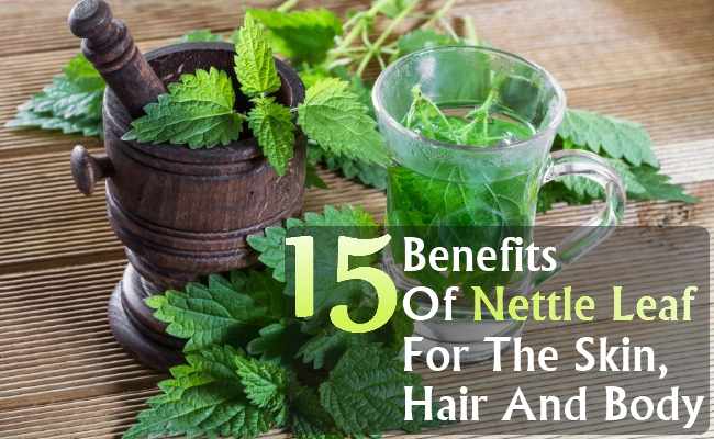 Top-16-Benefits-Of-Nettle-Leaf-For-The-Skin-Hair-And-Body