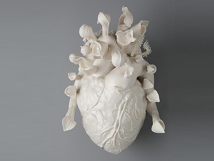 kmacdowell heart