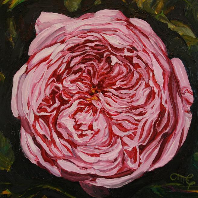 Rose-Mandala-IV-Marie-Cameron-6x6-oil-on-board-2013.jpg